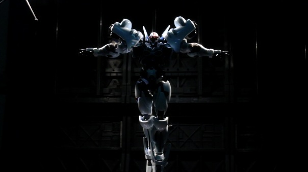 riobot-orgun-10