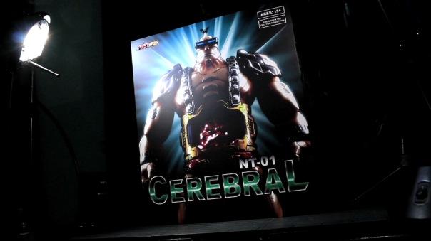 nt01-cerebral-01